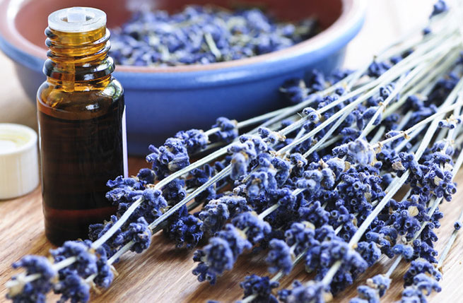 7 Essential Oils with Medical Benefits